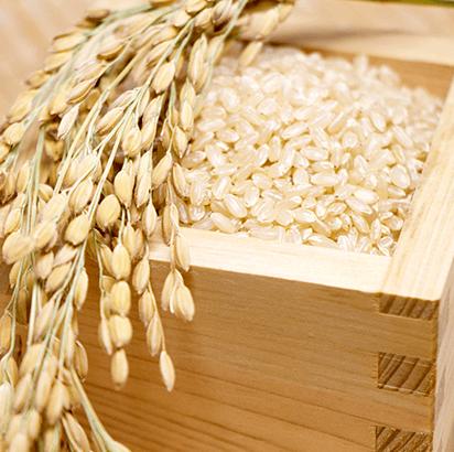 精米したての新鮮なお米を受け取れる