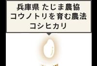 兵庫県 たじま農協 コウノトリを育む農法コシヒカリ